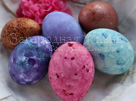 Naturally dyed Russian Easter eggs