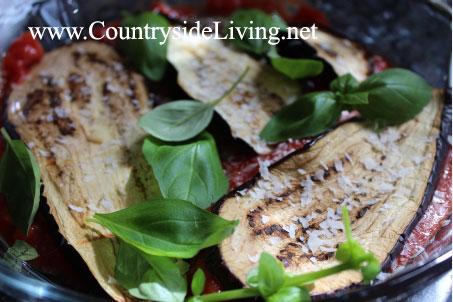 Баклажаны, запеченные в духовке, под сыром пармезан. Легкий рецепт