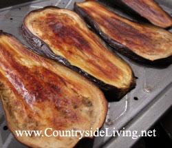 Баклажаны, обмазанные оливковым маслом и запеченные в духовке