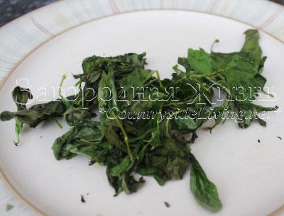 Как лучше сохранить и заготовить базилик на зиму сохранив его аромат